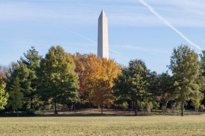 Washington Monument with fall colors in the foreground