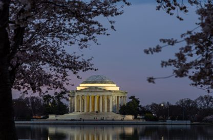Jefferson Memorial at Sunrise, during Cherry Blossoms