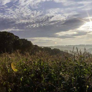Western Maryland,hazy sunrise