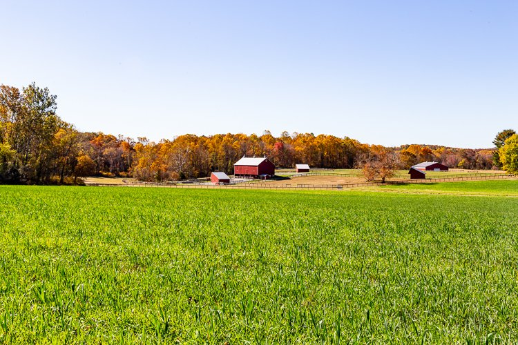 MD farm in Autumn
