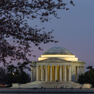Jefferson Memorial at Sunrise, during Cherry Blossoms (Portrait Orientation)